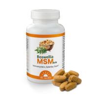 Boswellia MSM forte 90 Tabl. 113 g